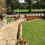 Our grunt garden