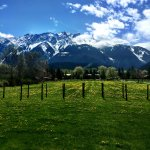 Spring view of Mt. Currie