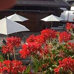 Photo of Hotel Haymon