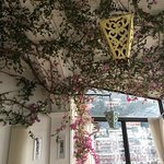 The ceiling of the beautiful breakfast room!