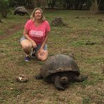 con una tortuga
