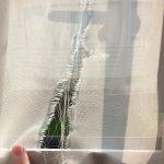 Ripped net in bedroom