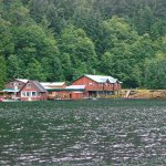 Zdjęcie Great Bear Lodge