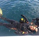 Photo of Divers Cape