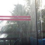 Parque da Costeira Foto