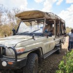 The custom safari vehicle for the game drives.