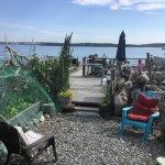 seashore deck