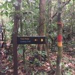 Slow and steady trekking whilst bird watching.
