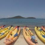 Foto de Kayaking Puerto Rico