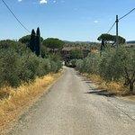 Foto van La Fornace di Racciano
