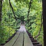 Мост счастья
