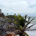 Photo of Univers Maya