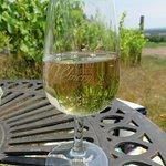 Table & Chaises parmi les vignes et ils nous prêtent les coupes à vin