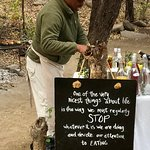Chitwa Chitwa Private Game Reserve Foto