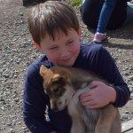 Grandson cuddling sled dog puppy