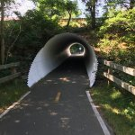 Cool Bike Patch Tunnel