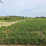 La Closerie des Vignes의 사진