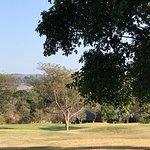 Kruger Park Lodge Foto