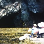 Kayaking through a cave, and kelp beds!