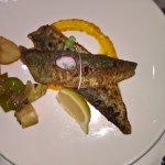 fresh fish filet