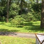 Photo de Hickory Run Campground