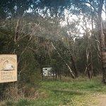 Balbirooroo Wetlands