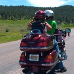 Traveling through Custer State Park