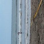 Photo de Samara Beach