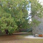 Yes trees near the chapel