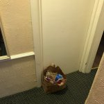 The tiny shared hallway - cant remember if there was space for rubbish bins in any of the rooms