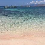 ピンクビーチの水際