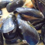 Beautifully cooked Moules Mariniere