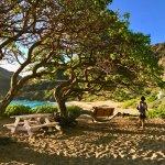 Makapu'u Beach at Sunrise