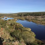 Photo of Bontebok National Park - Caravan and Camping