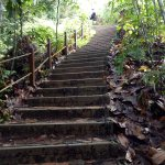 steps to summit