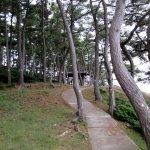 Photo of Izumo Hinomisaki Lighthouse