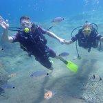 Photo of Magic Dive
