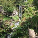 Photo de Jardin botanique Alpin de la Jaysinia