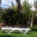 Photo of Parasol Garden