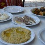 Humus, Haloumi, Sardines, Aubergines, and Zucchini