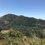 View from the center of the Bald Mountain Trail