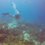 Photo de La Machaca Reef