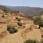 Foothills of the Atlas Mountains
