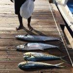Photo of Mystic Amara III - Deep Sea & Bottom Fishing Charters