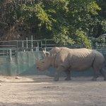 Photo of Almaty Zoo