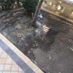 Les problèmes d'évacuation d'eaux usées