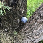 We had such a lovely round of golf in la junta - can you believe where my ball landed - no didn'