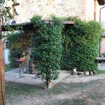 Foto de Trattoria Toscana Sant'Ilario