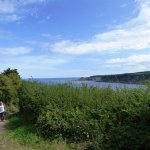 The pathway leading down to Runwick Bay.