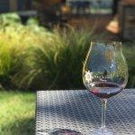 Photo de Sokol Blosser Winery